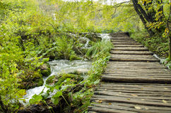 Boardwalk in Plitvice Royalty Free Stock Images