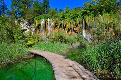 Boardwalk through Plitvice Lakes National Park, Croatia Royalty Free Stock Photo