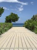 Boardwalk Prowadzi oceanu Vertical widok zdjęcie stock