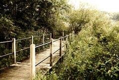 Boardwalk, przejście most w parku w stanie Michigan blisko jeziorem tło portfolio więcej mój podróż obraz royalty free