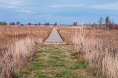 Boardwalk Przez łąki przy Necedah Fotografia Royalty Free