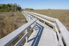 Boardwalk przez błot Zdjęcia Stock