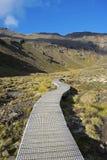 Boardwalk przez Tongariro parka narodowego, Nowa Zelandia Fotografia Stock