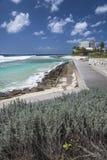 Boardwalk przy Hastings skałami, Barbados Obraz Royalty Free