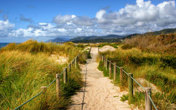 Boardwalk through the sand dunes on beach royalty free stock photography