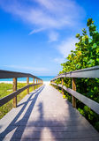 Boardwalk among sea oats to beach in Florida Stock Photos