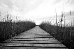 Boardwalk Royalty Free Stock Photos