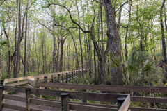 Boardwalk At Slough Preserve. Located at Six Mile Cypress Slough Preserve, Fort Myers - FL, USA Stock Photography