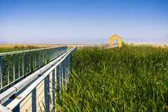 Boardwalk stretching over a marsh stock photo