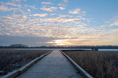 Boardwalk Sunrise in Wildlife Refuge Royalty Free Stock Photography