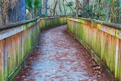 Boardwalk in swamp Royalty Free Stock Photos