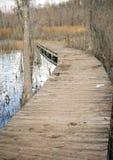 Boardwalk into a swamp Stock Photos