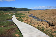Boardwalk in the Tablelands Royalty Free Stock Image