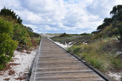 Boardwalk to the beach Royalty Free Stock Photography