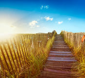 Boardwalk to the beach. Wooden boardwalk through the dunes to a Maine beach at sunrise Royalty Free Stock Images