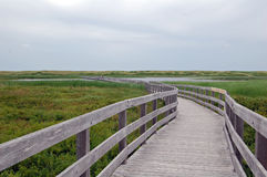 Boardwalk to dunes Royalty Free Stock Photos