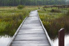 Boardwalk to nowhere royalty free stock photo