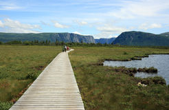 Boardwalk to Western Brook Pond. Western Brook Pond, Canada - July 19, 2011: People on a boardwalk and trail which leads to Western Brook Pond in Gros Morne Stock Photos