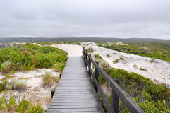 Boardwalk to White Cliff Point Stock Photography