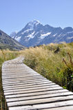 Boardwalk towards Mount Cook (New Zealand) Royalty Free Stock Photo
