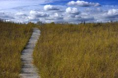Boardwalk Trail stock photography
