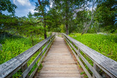 Boardwalk trail on Olmsted Island at Great Falls, Chesapeake & O stock photos