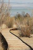Boardwalk Trail Royalty Free Stock Image