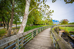 Boardwalk trail in a wetland, at Rivergate City Park, in Alexand Royalty Free Stock Image