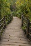 Boardwalk Trail In Woods Royalty Free Stock Photo