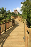 The Boardwalk at Vidanta Riviera Maya Stock Photos