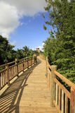 The Boardwalk at Vidanta Riviera Maya Royalty Free Stock Image