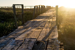 Boardwalk w kierunku słońca Obraz Royalty Free