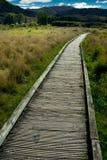 Boardwalk w Nowa Zelandia Obraz Royalty Free