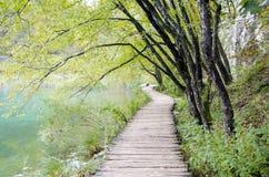 Boardwalk w Plitvice zdjęcia stock