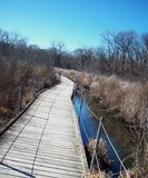 Boardwalk Through Wetland Stock Photography