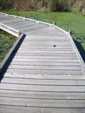 Boardwalk in the Wetland Stock Photos