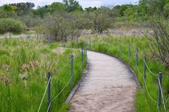 Boardwalk in the Wetland Royalty Free Stock Photos