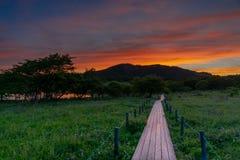Yashima Wetlands sunset royalty free stock images
