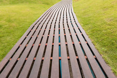 Boardwalks through and grass Royalty Free Stock Image