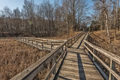 Boardwalks in a Park Stock Photography