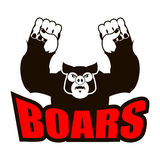 Boars logo for sports team. Angry pig. Aggressive wild boar. gru Royalty Free Stock Photos