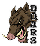 Boars Sports Mascot. An illustration of a boar sports mascot head with the word boars Stock Image