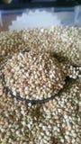 boas sementes brancas sem glúten saudáveis do trigo mourisco Foto de Stock Royalty Free