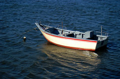 Boat. In water Royalty Free Stock Images