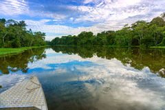Boat and Amazon Landscape Royalty Free Stock Photos