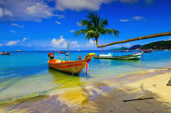 Free Boat And Coconut On The Island Stock Image - 22044511