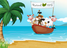 A boat with animals at the beach. A boat with a farmer and animals at the beach Stock Photo