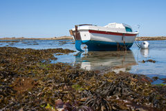 Free Boat At Ebb Tide In Bretagne, France Royalty Free Stock Image - 15360546