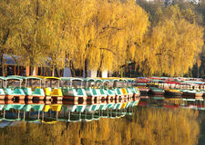 Boat and autumn trees royalty free stock photo