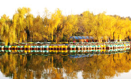 Boat and autumn trees royalty free stock images
